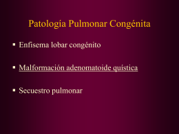 7-Pat.Pulmonar Congénita(maq)