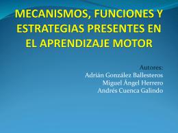 mecanismos, funciones y estrategias presentes en el