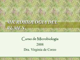 MICROBIOLOGIA DEL RUMEN