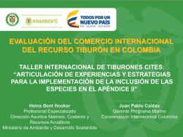 comercio internacional recurso tiburon en colombia resultados