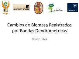 Biomasa y Crecimiento de Tallos con el Uso de Bandas