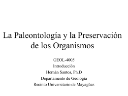 La Paleontología y la Preservación de los Organismos