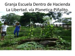 Red De Granjas Agroecologicas II