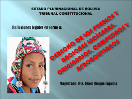 derechos de las naciones y pueblos indigenas originarios