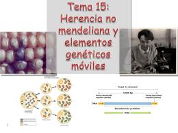 Tema 15: Herencia no mendeliana y elementos genéticos móviles
