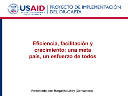 Presentado por: Margarita Libby (Consultora)