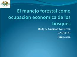 El manejo forestal como ocupacion economica de los bosques