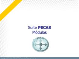 1.1 PECAS Suite PECAS