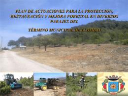 Presentación Plan Forestal