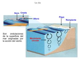 Ver presentación sobre olas, mareas y corrientes