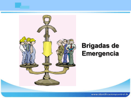1-estructura-brigadas