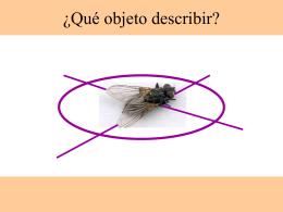 ¿Qué objeto describir?