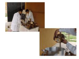 fotos proceso agua de coco