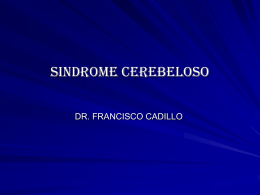 12.sindrome cerebeloso