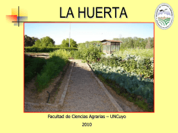 la huerta - Campus Virtual Facultad de Ciencias Agrarias