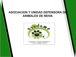 ASOCIACION Y UNIDAD DEFENSORA DE ANIMALES DE NEIVA
