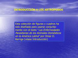 Introducción a los artrópodos