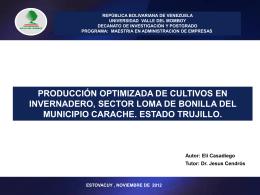 1q2dwzpresentacion tesis maestria noviembre 2013