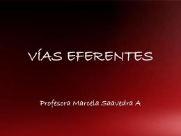 VÍAS EFERENTES - Liceo Madre Vicencia