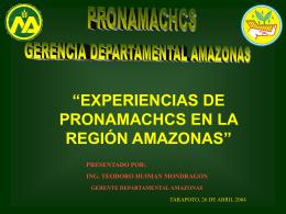 Ing. Teodoro Huiman (PRONAMACHCS – Amazonas)