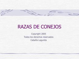 RAZAS DE CONEJOS