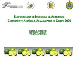 Veracruz - Concitver