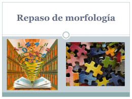 Curso_Morfología