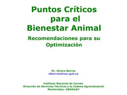 Puntos criticos para el bienestar animal