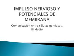 impulso nervioso y potenciales de membrana