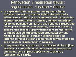 Renovación y reparación tisular, regeneración curación y