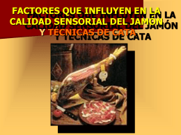 análisis sensorial del jamón: técnica de cata, vocabulario específico
