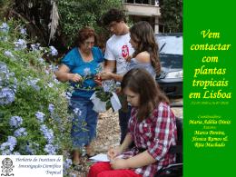 Vem contactar com plantas tropicais em Lisboa
