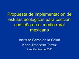 Consumo de leña en México. Proyecto del Instituto