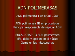 ADN POLIMERASAS