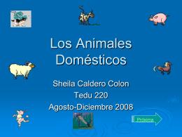 los-animales-domesticos-931