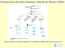 Método de Maxam