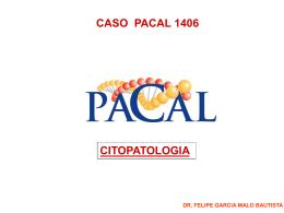 CASO CITO 1406