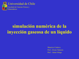 Simulaciones - Universidad de Chile
