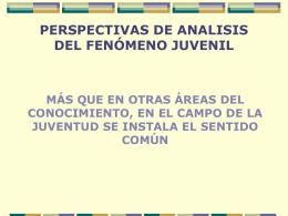 perspectivas de analisis del fenómeno juvenil