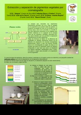 Extracción y separación de pigmentos vegetales por