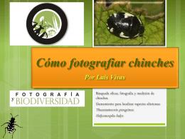 presentacion1 - Biodiversidad Virtual