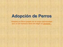 adoptada!