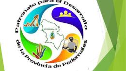 Presentación Patronato Provincia Pedernales