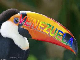imágenes de venezuelaa