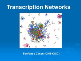 Transcripción en Bacterias: Una perspectiva genómica