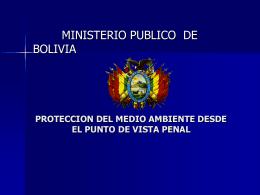 LINEAMIENTOS DE PERSECUCIÓN PENAL