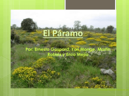 Paramo - CorpoUmanowiki