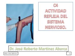 c4 actividad refleja del sistema nervioso