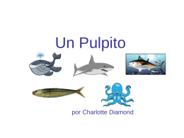 Burp - R-PTechnologyPLC