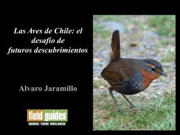 Las Aves de Chile
